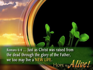 Hope Is Alive Worship Video Product Image