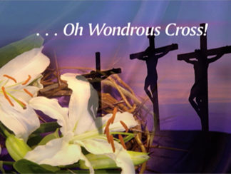 Oh Wondrous Cross Worship Video Product Image
